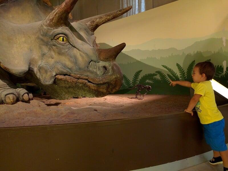 Criança no Museu Cívico de História Natural de Milão